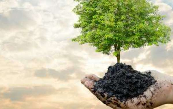 The history of the leading environmental management standard