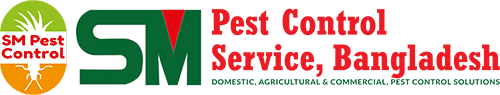 Bed Bugs Control Service in Cheap Price   SM Pest (BD)