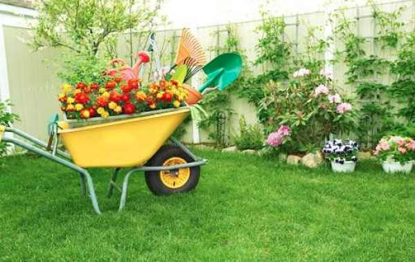 Learn Something New About Organic Gardening With These Interesting Tips