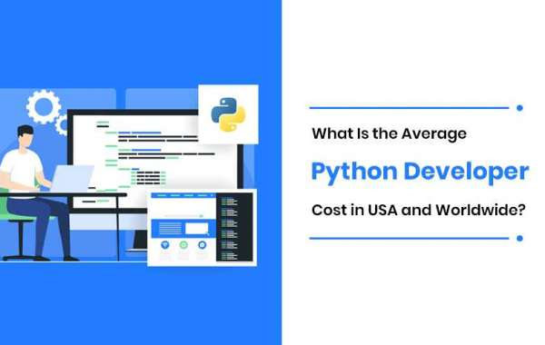 Cost of Hiring Python Dedicated Developers? — In the USA & Globally