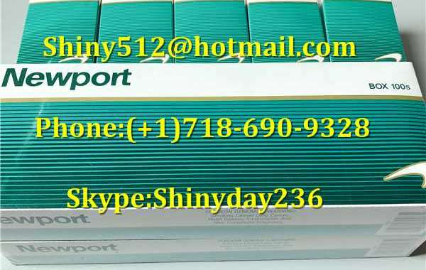 Wholesale Newport Cigarettes Online and arid environment