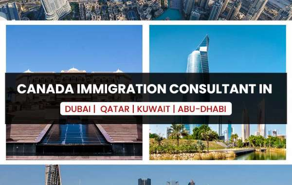 Top Canadian Immigration Programs You Need to Know About