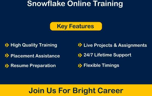 Snowflake Time Travel   CourseDrill