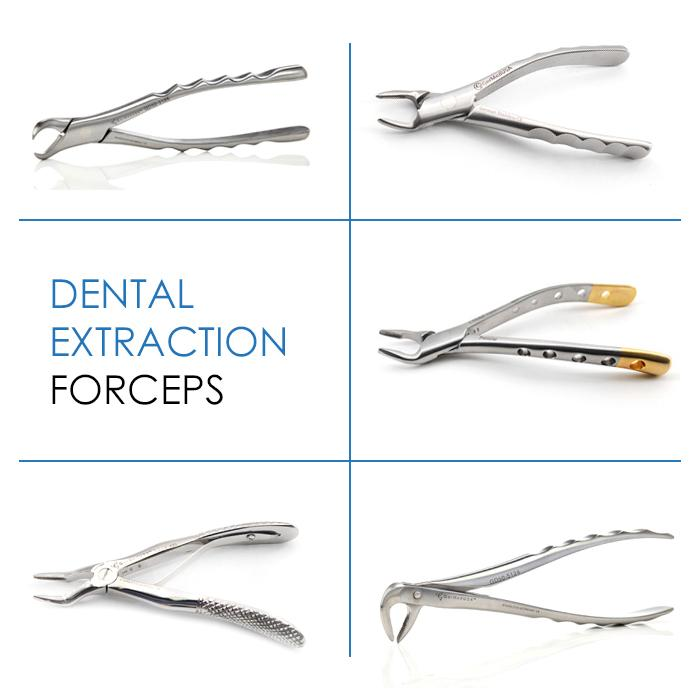 Dental Extraction Forceps & Their Role in Veterinary Dentistry