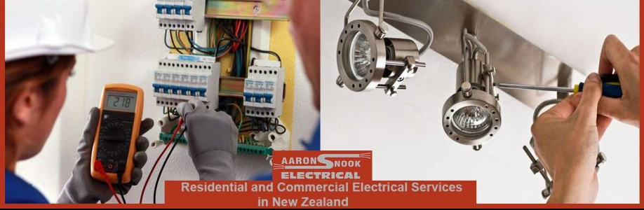 Aaron Snook Electrical Cover Image