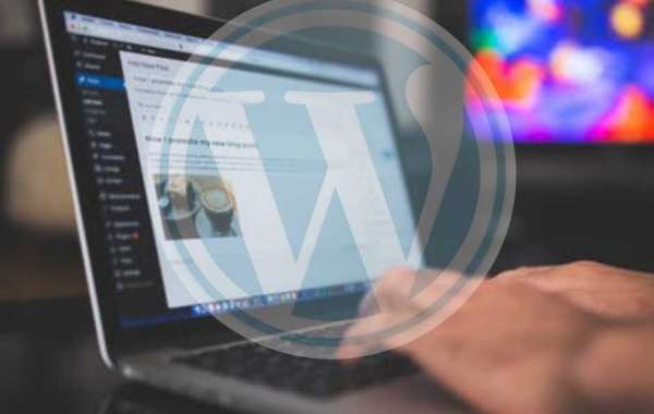 Why Should You Choose WordPress for Your Business Website?