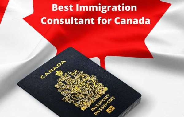Without Hesitation Contact for Best Immigration Consultancy or Marriage Lawyers
